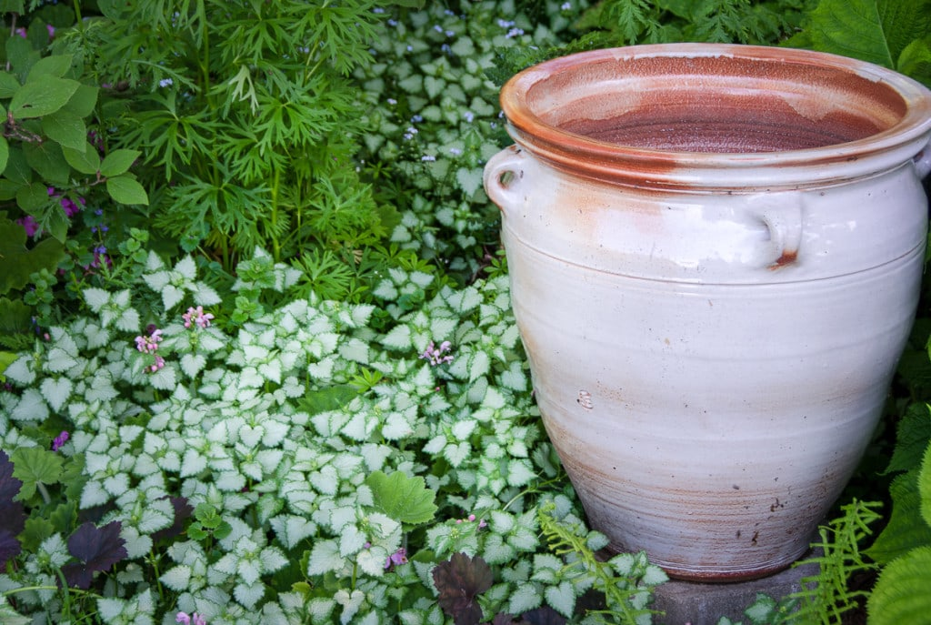 A large hand-thrown pot graces a shady corner