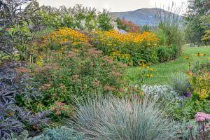 The late September garden