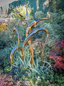 Dale Chihuly at Denver Botanic Gardens  JHI-0839