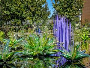 Dale Chihuly at Denver Botanic Gardens JHI-0877