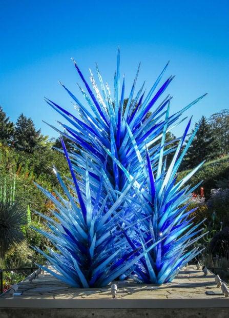 Dale Chihuly at Denver Botanic Gardens JHI-0946